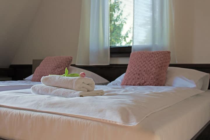 Penzion&Wellness Zoborska Double Room
