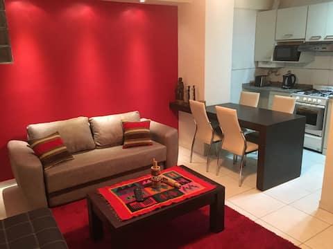 Moderno departamento, amplio y cómodo en Santiago