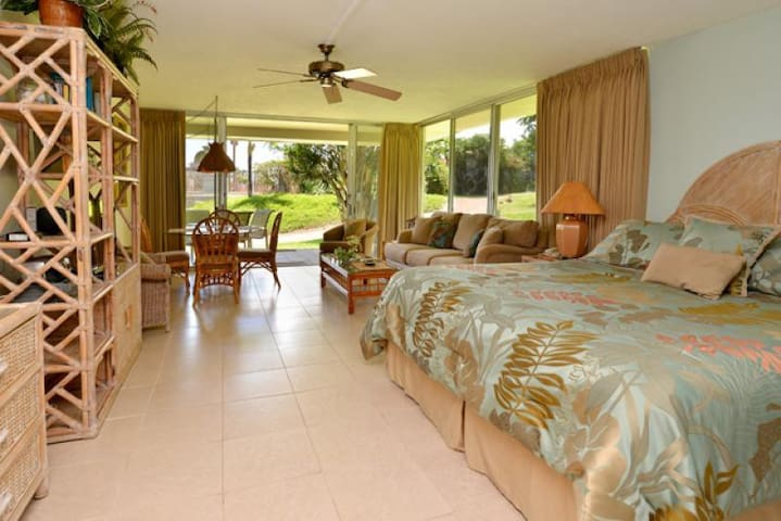 Kaanapali Maui Condo - Great VALUE!! Walk to Whaler's Village - G101