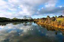 Paremuka lake