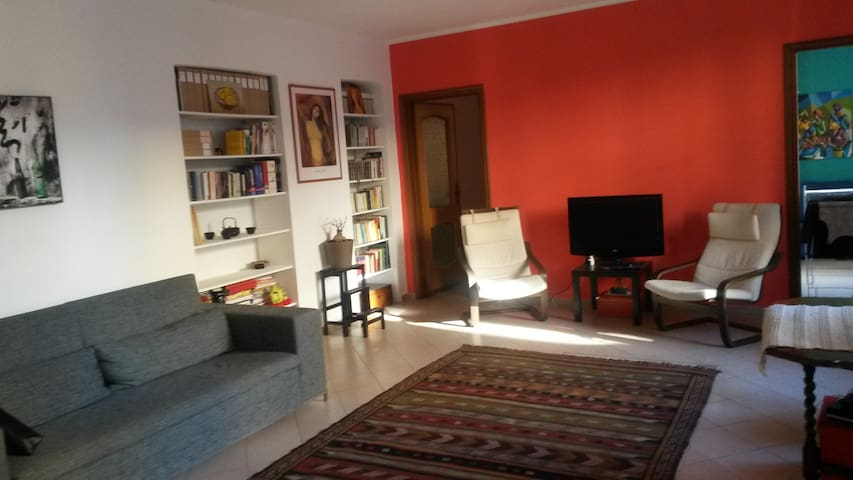 Large and cozy apartment in Vanchiglia - Torino - Apartment