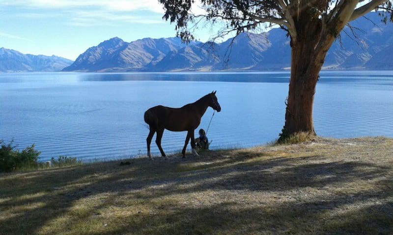 Lakeview Cottage - Lake Hawea