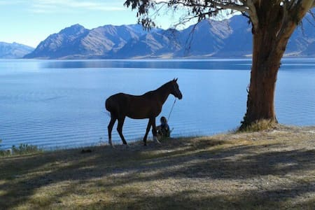 Lakeview Cottage - Lake Hawea - House