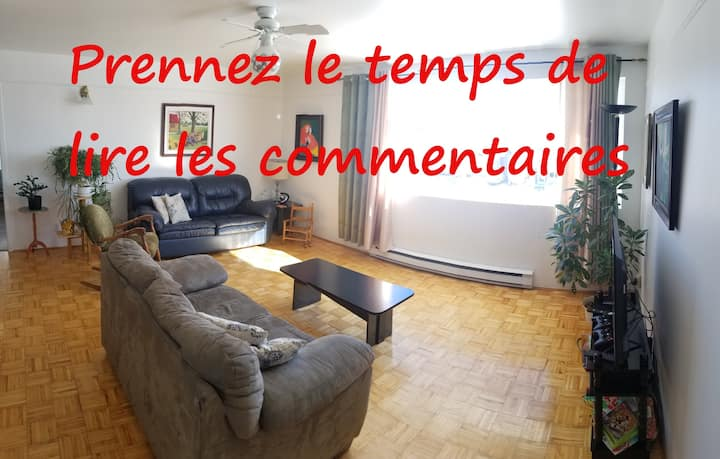 Apartment just a stone's throw from Lac Saint-Jean