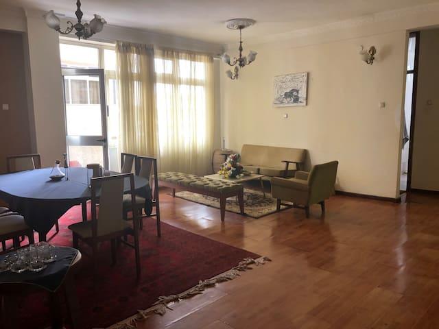 Centertown Apartment next to UNECA Kazanchis