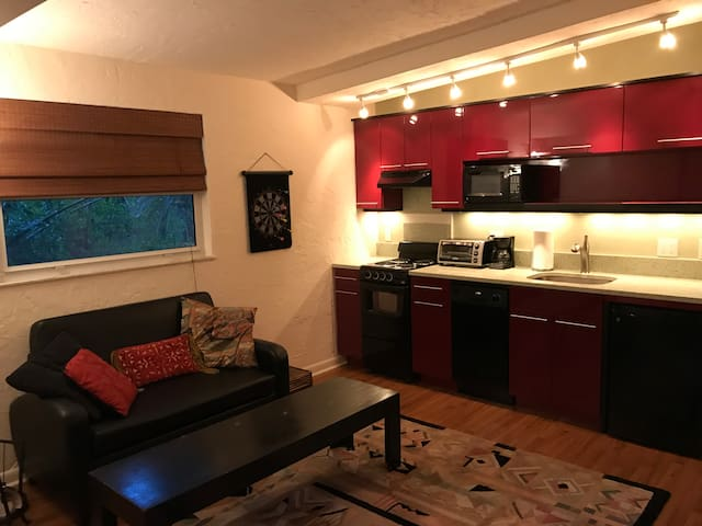Unique One Bedroom Efficiency Apartment