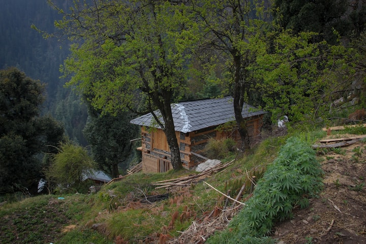 A Quaint Cabin At The End Of The Habitable World