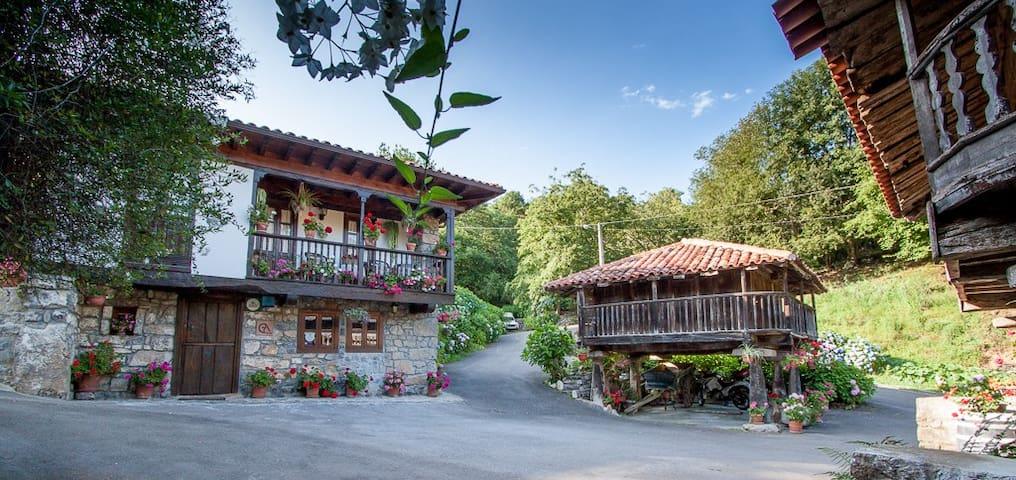Caserío tradicional asturiano. Casa rural 6 plazas