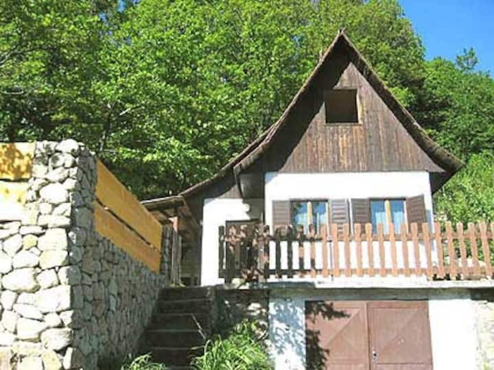 Cottage in forest above Bratislava