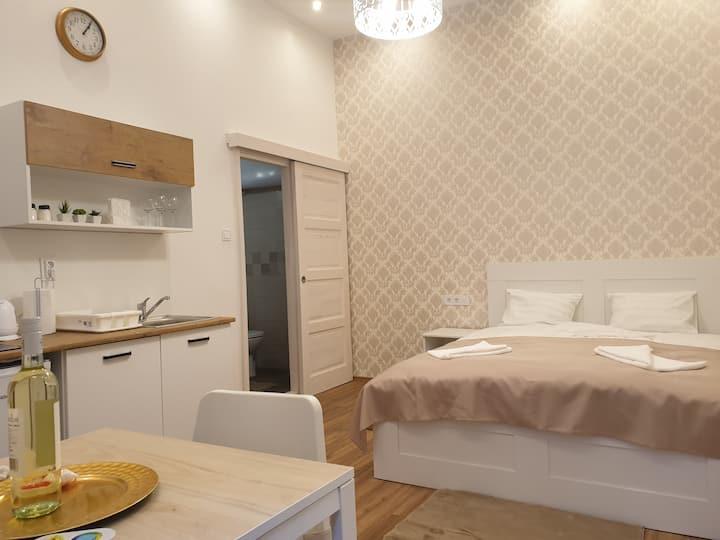 Cozy Studio Apartment with AC