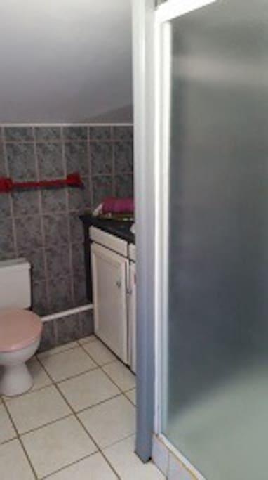Salle de bain, Toilettes