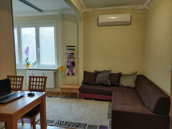 Orchid Apt near city center with Kamzik Tower view