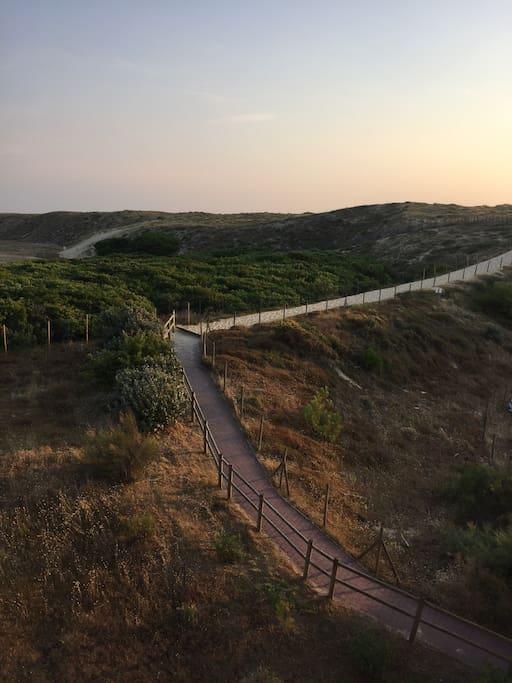 Le sentier privatif menant à la plage et aux spots de surf. L'eau à 3 minutes à pied.