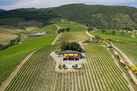 Secluded Luxury Studio in Vineyards - Montalcino - Villa