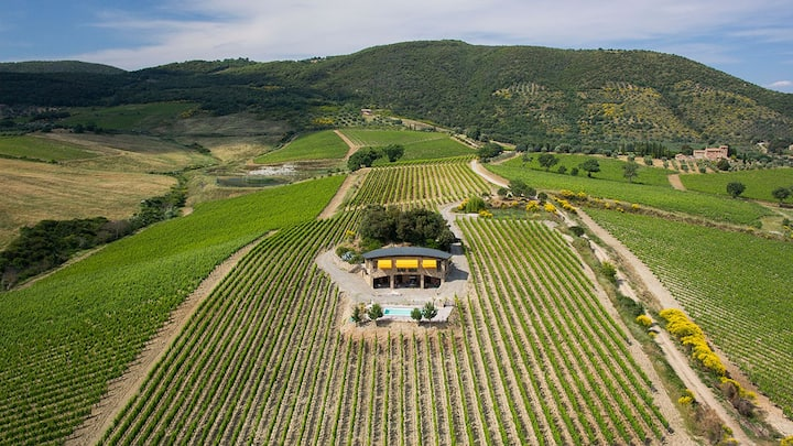Secluded Luxury Studio in Vineyards