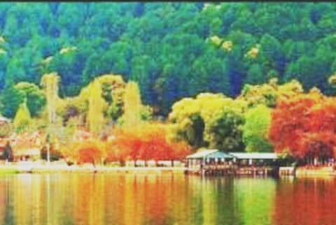 Doğa ile iç içe köy hayatını deneyimleyim...