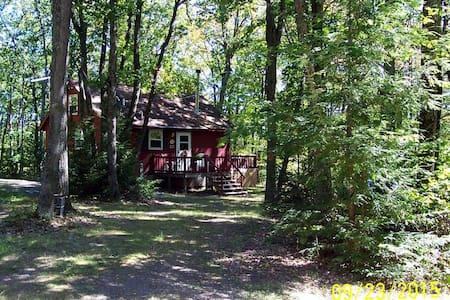 Camp SMOGR - Updated Cabin at Tioga State Forest - 韦斯特菲尔德 - 小木屋