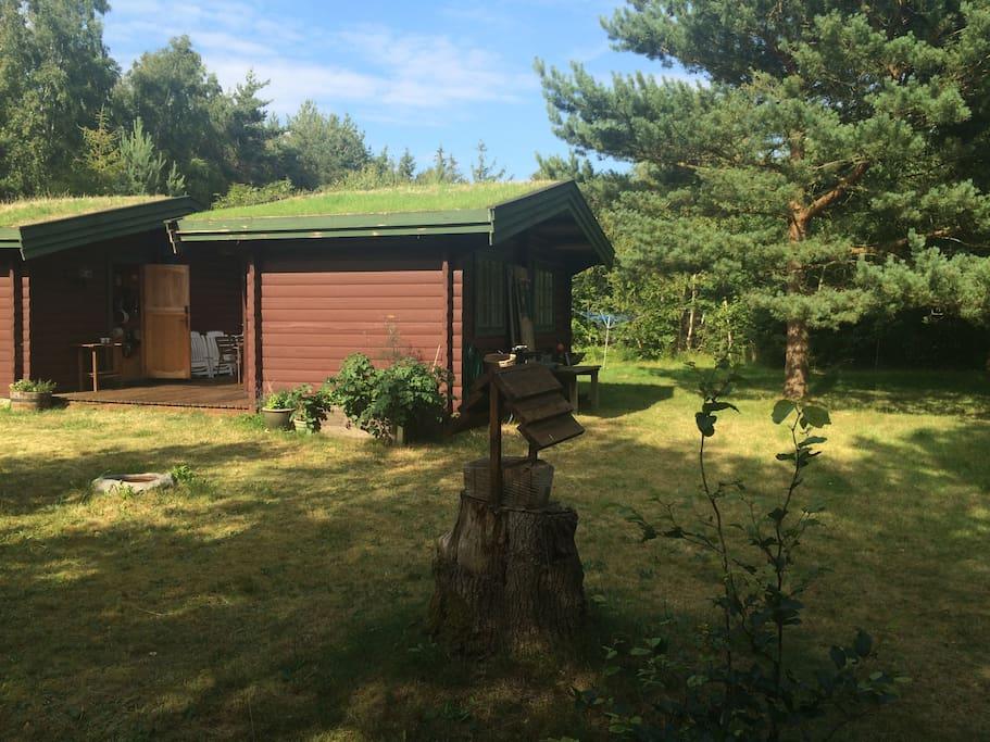 The next door house/ annex