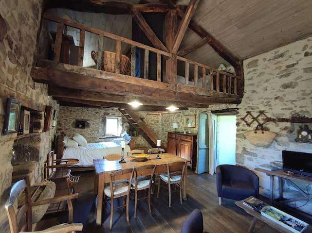 Pièce principale, petit lit en 120, mezzanine avec lit en 140.