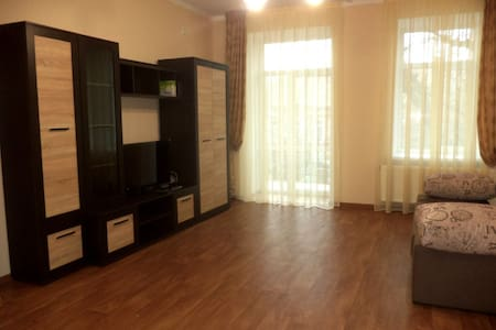 Very nice studio apartment (center)