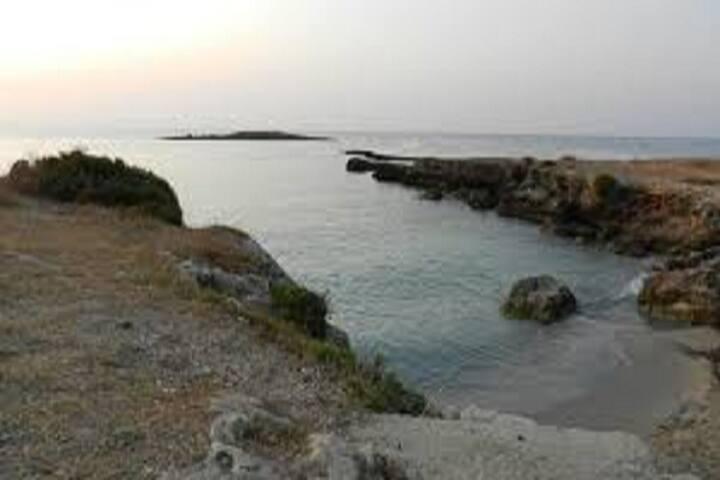 La Pinetina - Ognina