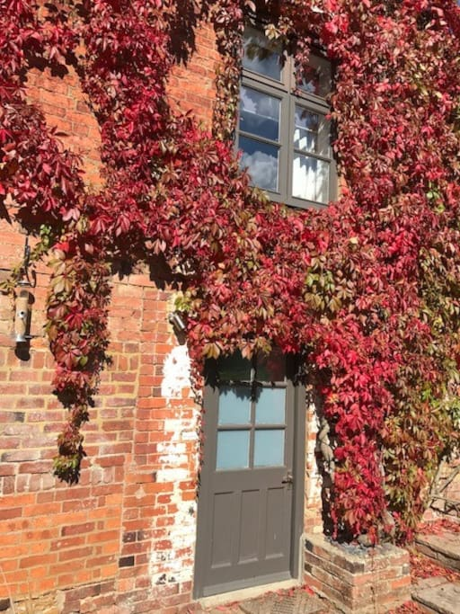 Autumn colours outside your private bolt hole
