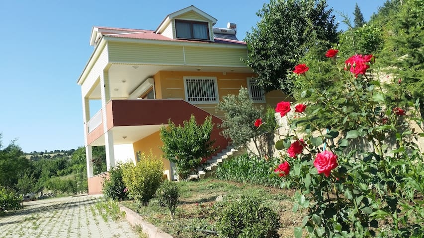 Luxury villa in the countryside - Hamidiye Köyü - Villa