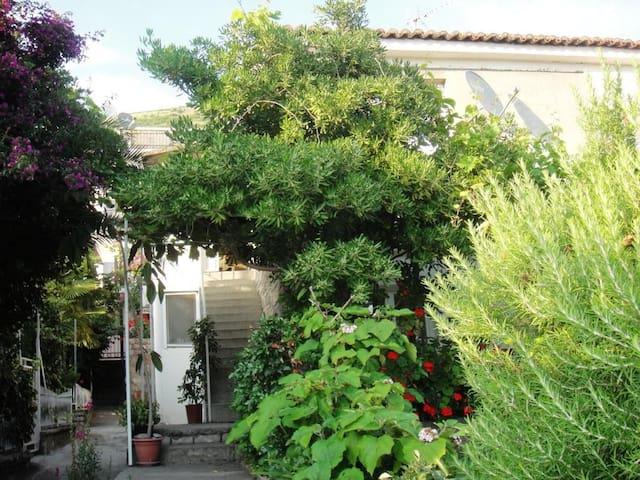 Дом с садом на две семьи - Petrovac - Huis