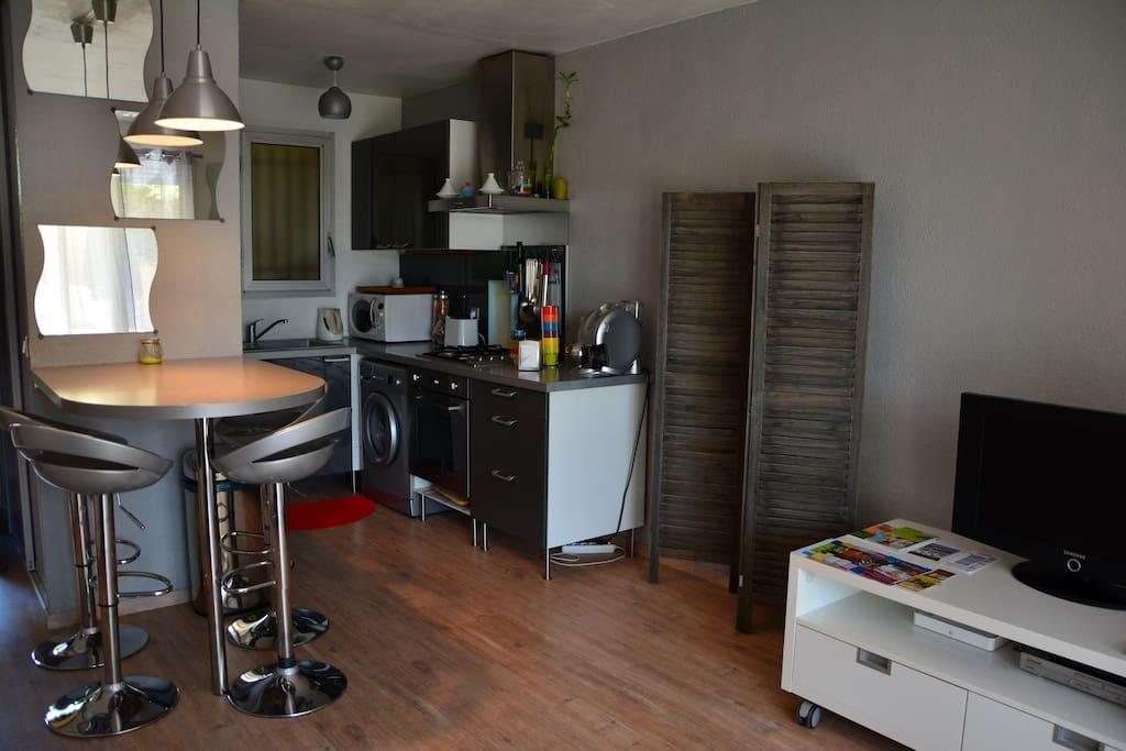 Appartement rénové récemment, très fonctionnel.