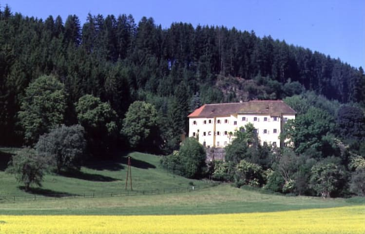romantic apartment in old castle - Neumarkt in der Steiermark - Slott