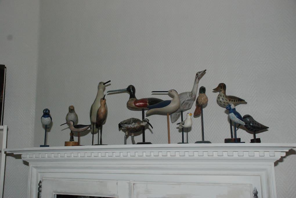 Une collection d'oiseaux pour vous accueillir!