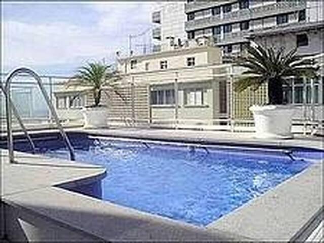 Swimming pool in the terrace