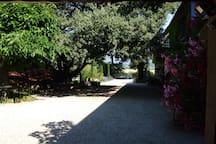 Beautiful courtyard.
