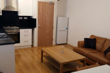 Modern 1 bedroom flat close to city - Flat