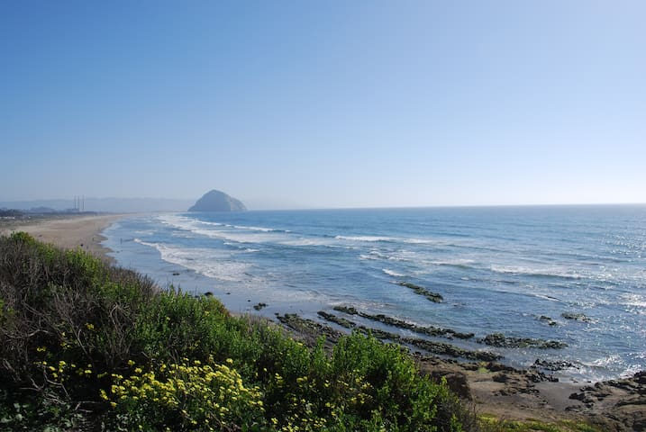 Ocean Views & Walk to the Beach! - Morro Bay