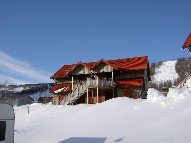 Fin lägenhet i Ramundberget uthyres