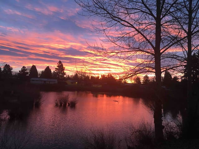 Peaceful Lake View - West Eugene