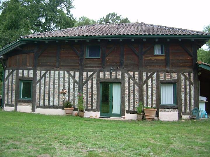 Grange rénovée au cœur de la forêt Landaise