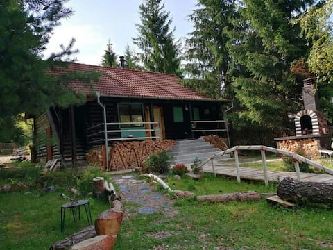 Mountain cabin in the heart of Apuseni Mountains