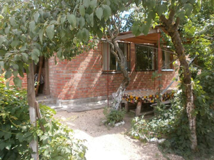 Просторный дом с личной беседкой в ст. Должанская