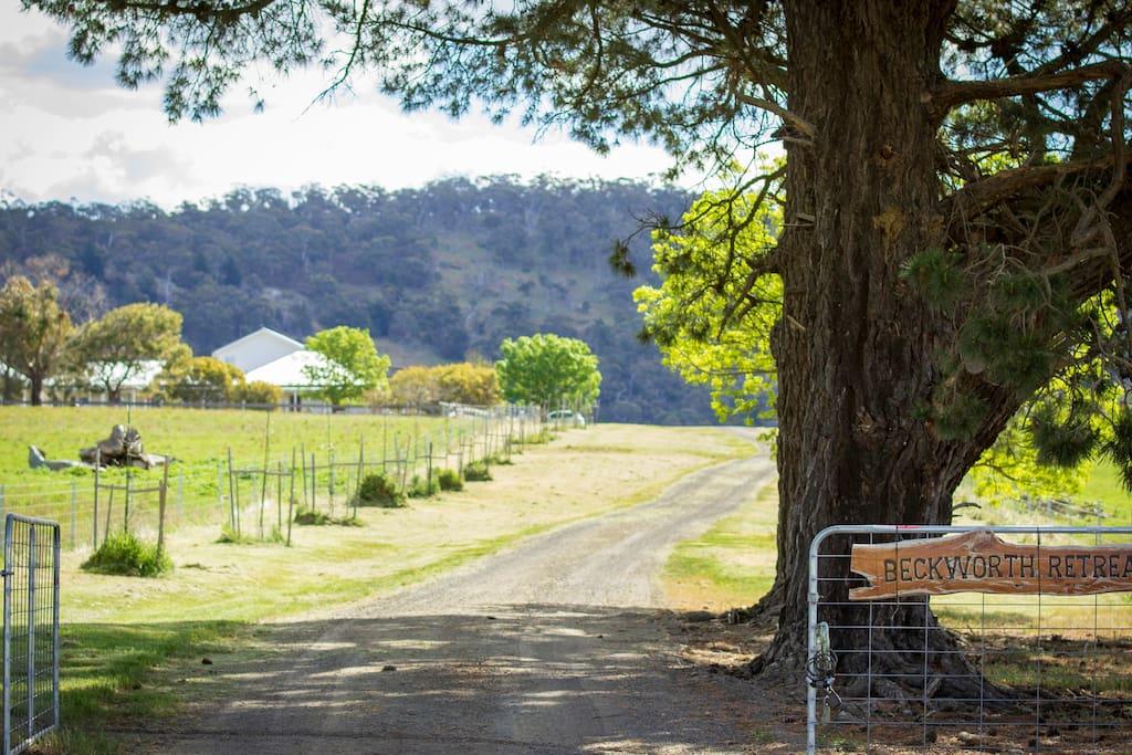 Farm access gate to Beckworth Retreat