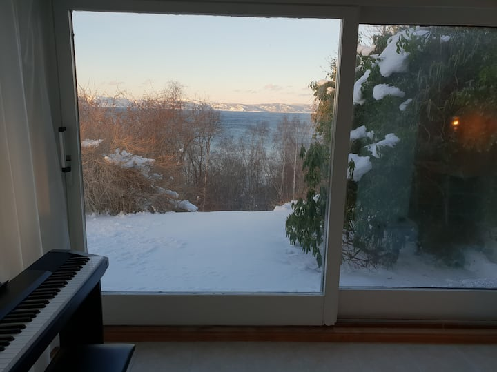 Cozy apartment with fantastic view! free park/wifi