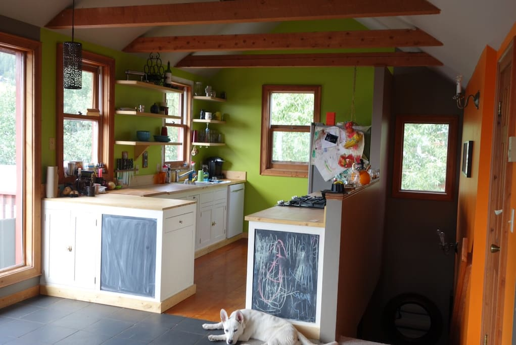 Sunny Upper Floor Kitchen. New appliances. Dog not included!