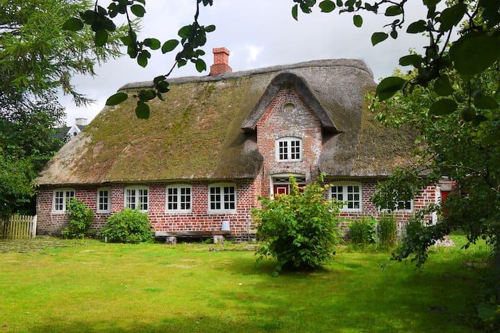 Charmerende bondehus i landsby - Højer