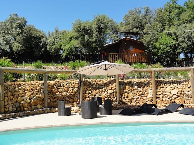 chalet studio  bois, terrasse 2/3 p - Trans-en-Provence - Bed & Breakfast