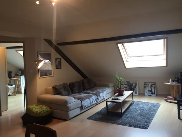 Sous les toits, charmant cocon ! - Albertville - Appartement