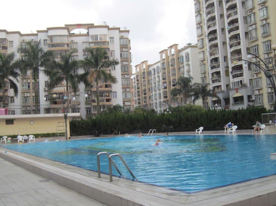 公寓门前的游泳池。