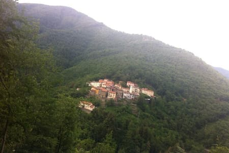 SINGLE HOUSE IN THE GREEN WILD! - Granaglione