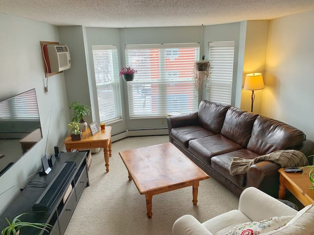 Bright Large 1 Bedroom Perfectly Located in NE MSP