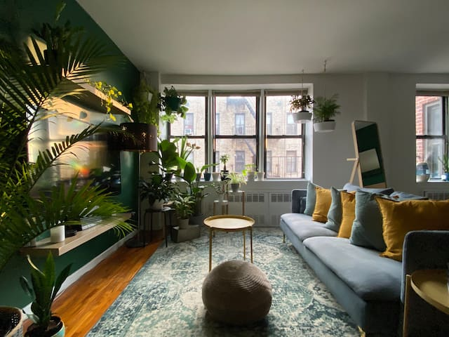 Stylish Potted Plant Paradise in Brooklyn